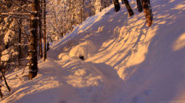 Wintermorgen am Weg zum Gipfel