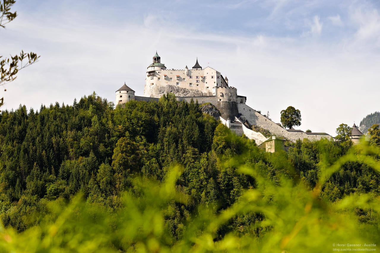 Burg hoch auf einem Fels im Wald