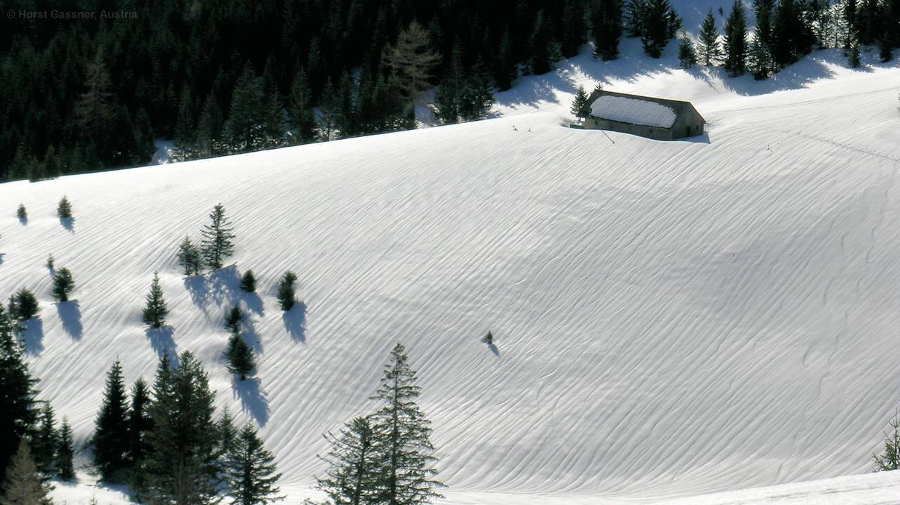 Ein Paradies für Schneeschuhe