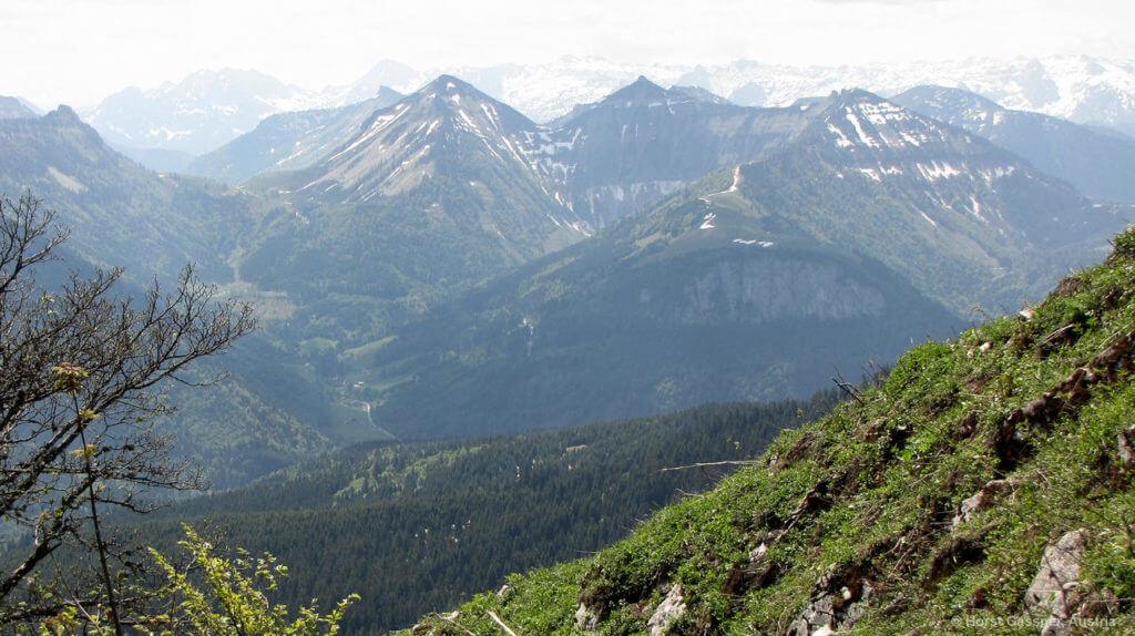 Faistenauer Schafberg auf dem Gipfel