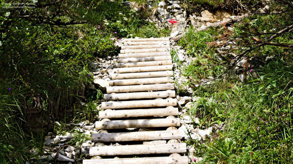 Holzstufen bei der Wanderung auf das Gruberhorn