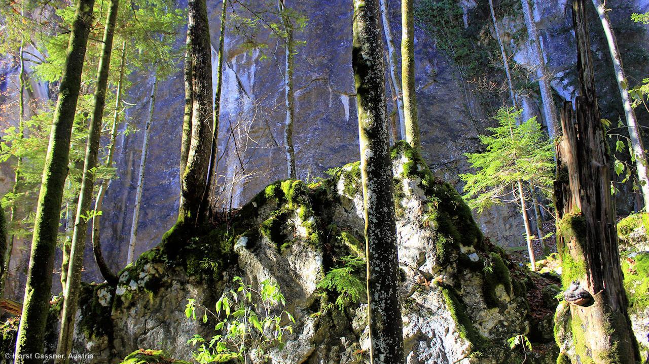 Schon beinahe märchenhafte Felsformationen