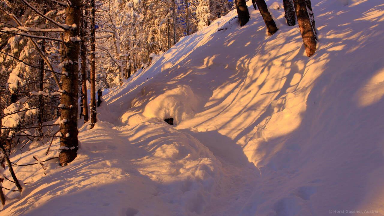 Der Nockstein - Aufstieg im Winter
