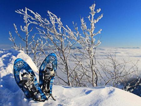 5 Tipps zum Kauf von Schneeschuhen