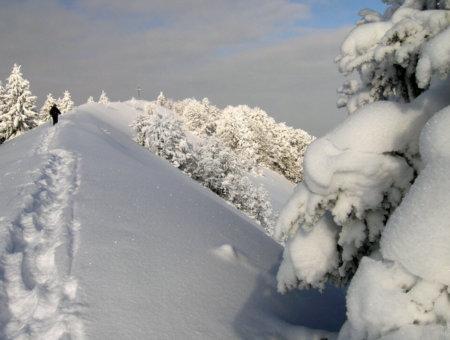 5 Tipps zum Fotografieren im Winter
