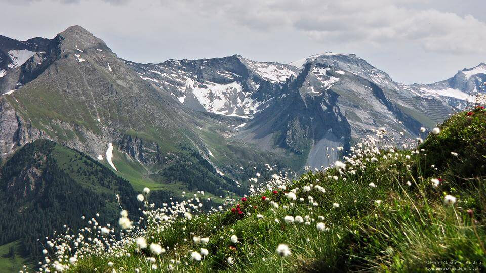 Zillertal im Bundesland Tirol