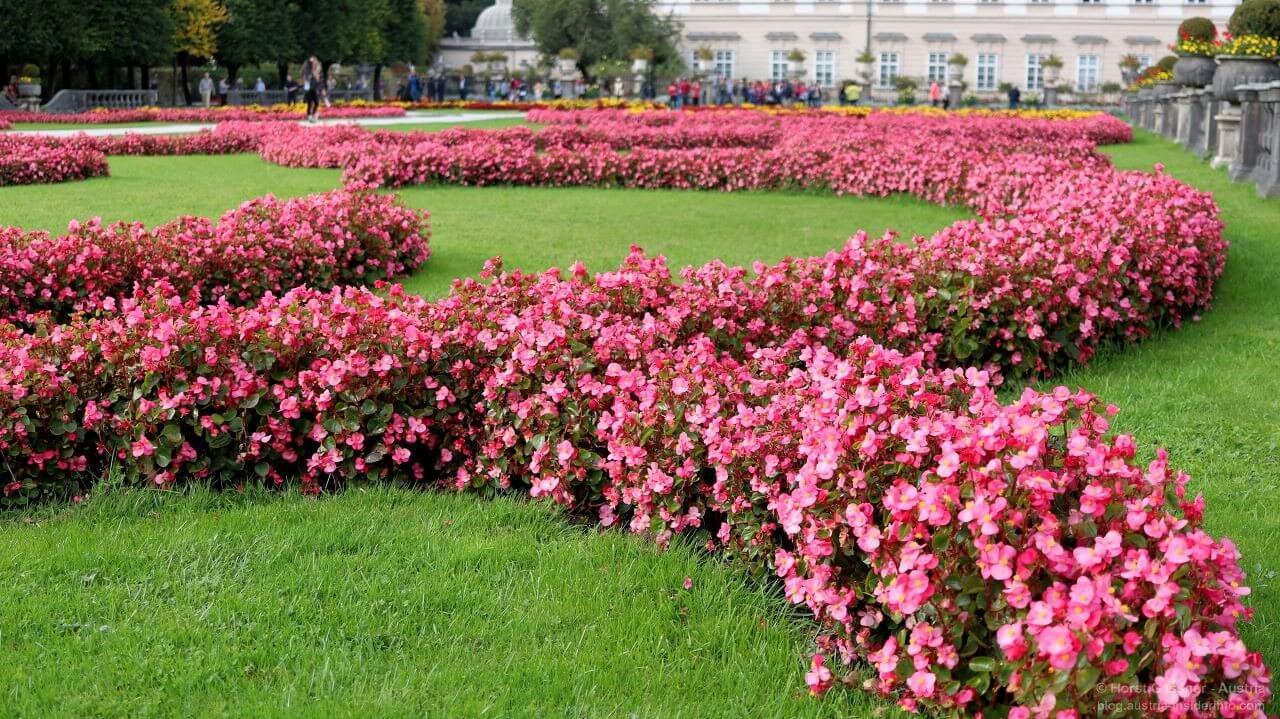 Der Mirabellgarten - ein der Top Sehenswürdigkeiten in Salzburg