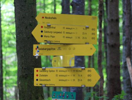 Wegefreiheit in Österreich