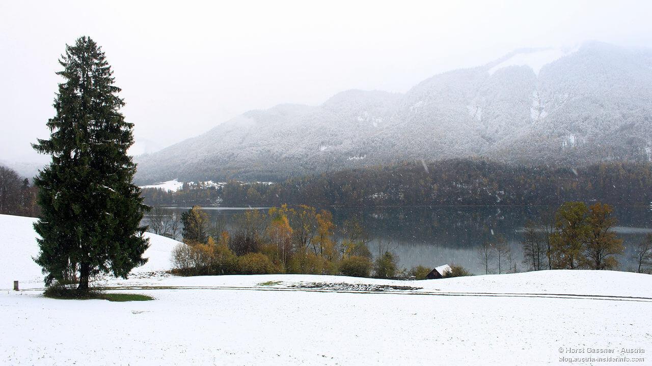 Am Fuschlsee bei Schneefall