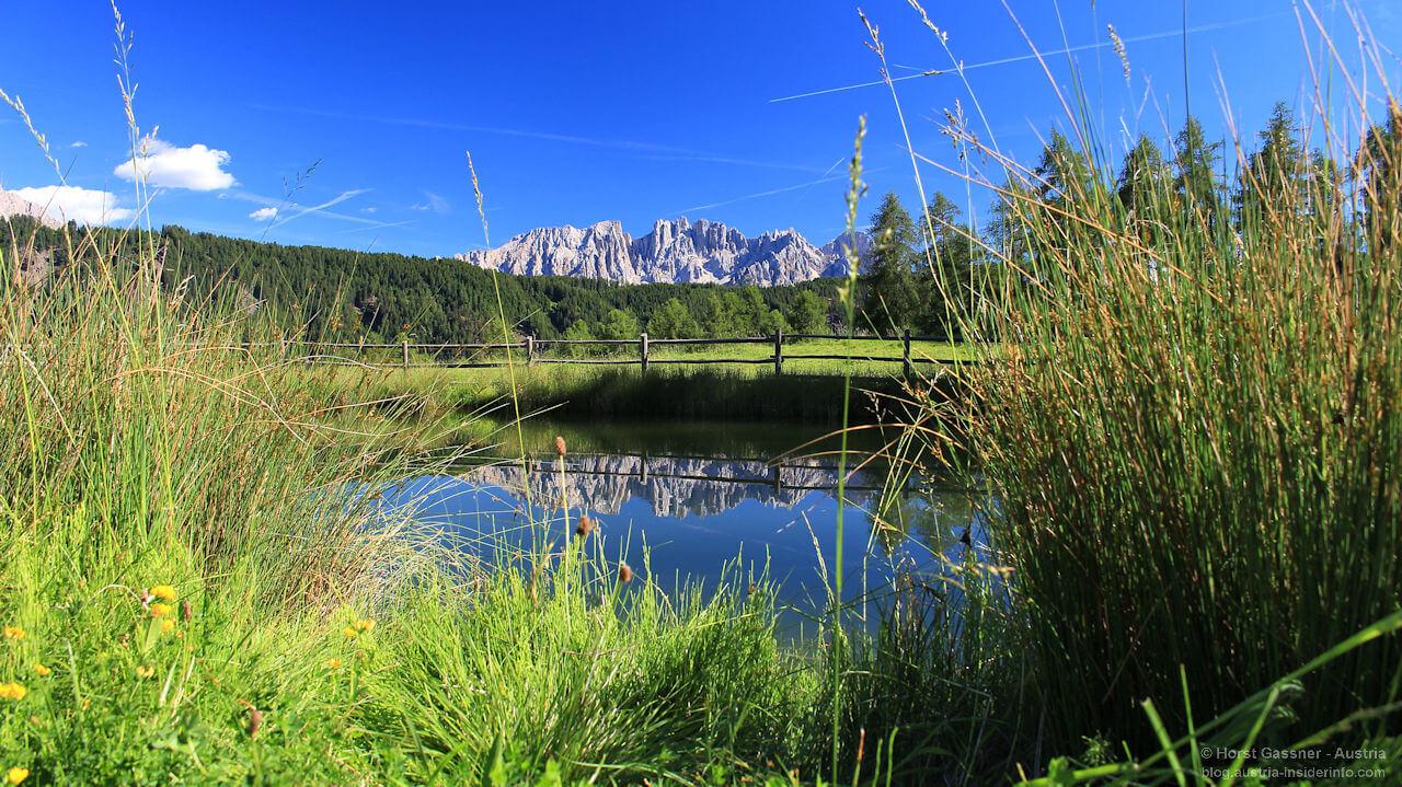 Am Wuhnleger - Blick zum Rosengarten, Südtirol