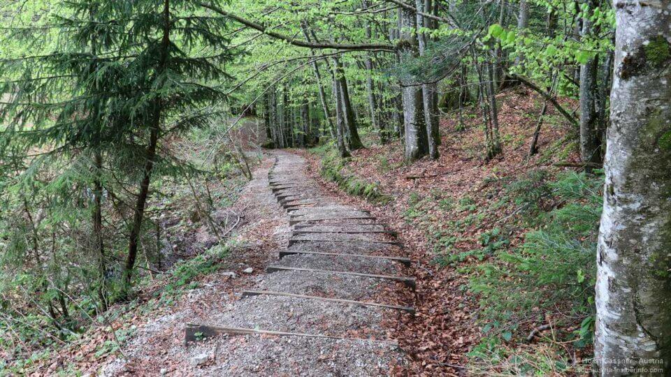 Wasserwunder Tiefenbach - Stufen