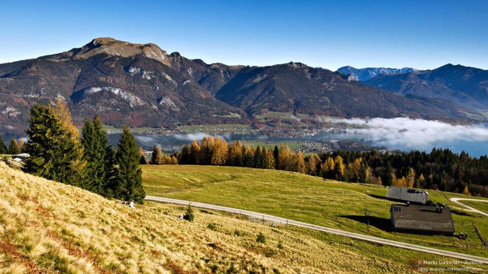 Auf dem Weg zum Breitenberg