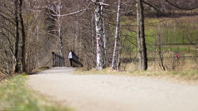 Frühling am Fuschlsee im Salzburger Land