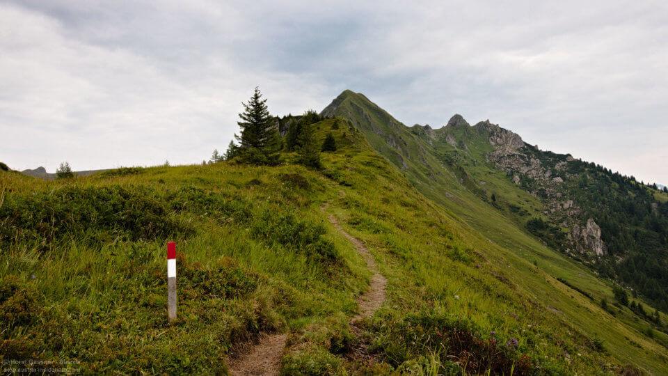 Wanderhotel Gratz Großarl - Grat Hochegg