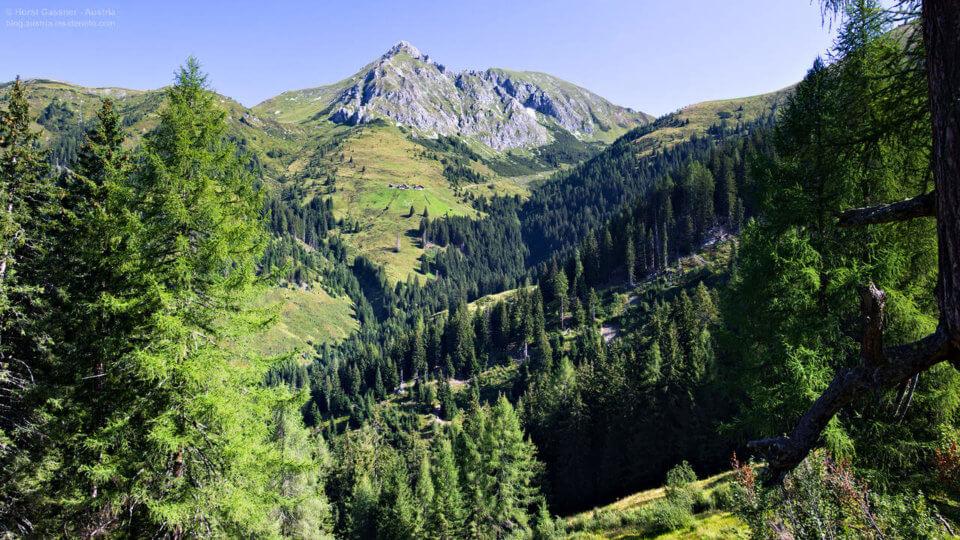 Kreuzeck (2.204m) über Karteisalm - Blick zum Draugstein