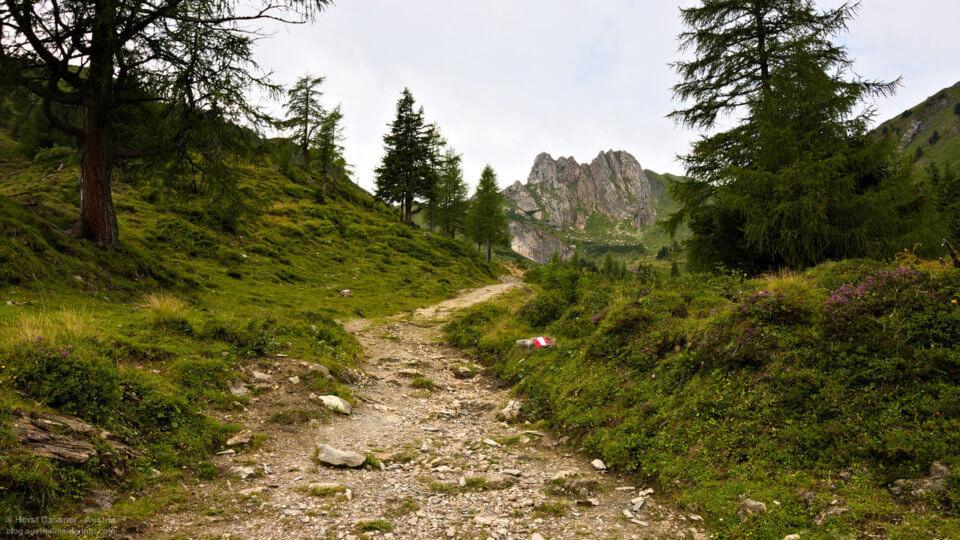 Weg in Richtung Arlspitze