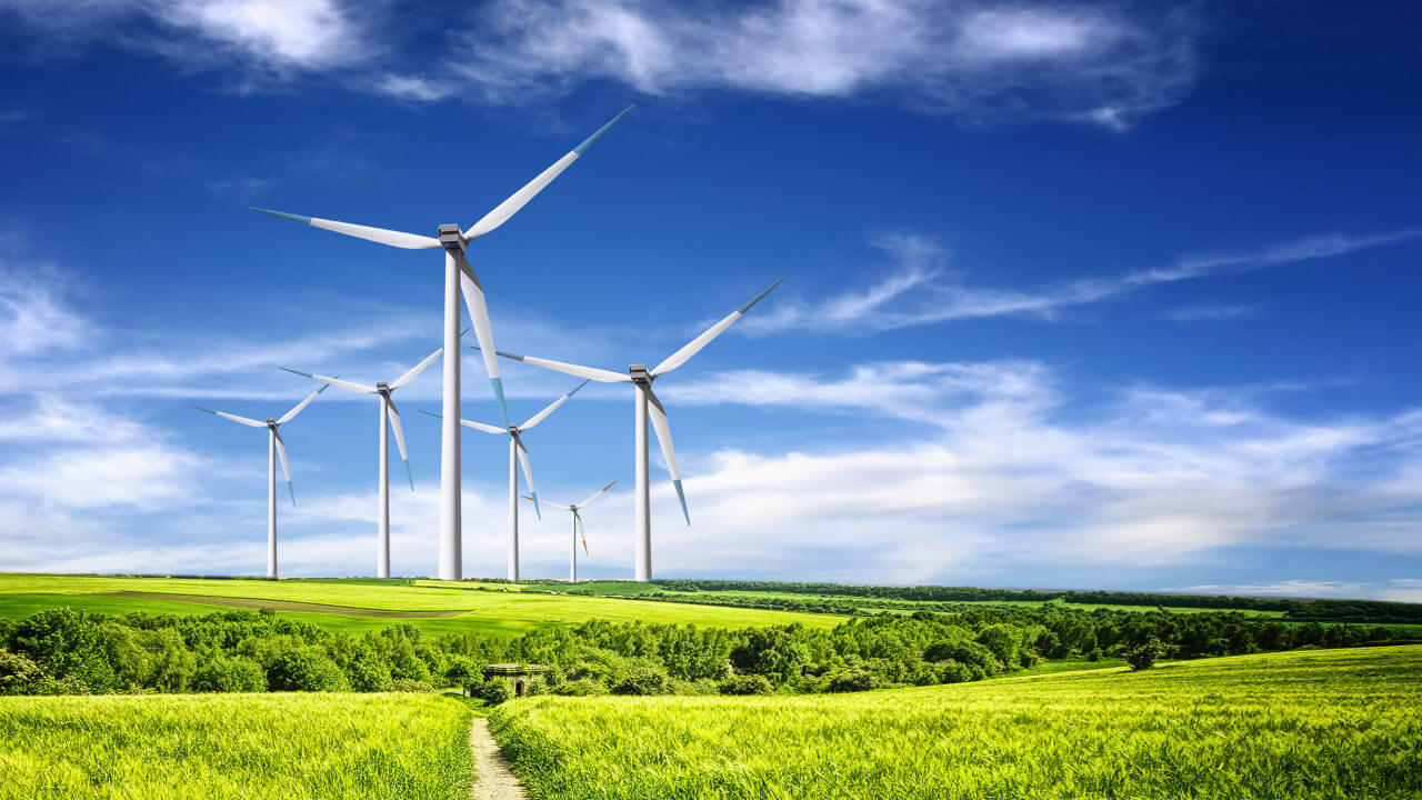 Nachhaltigkeit - Natur & Umwelt - cover