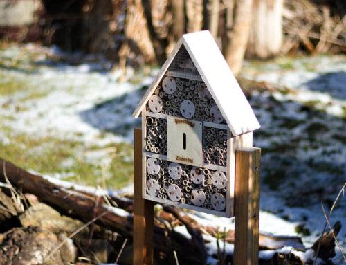 Nisthilfe – den Wildbienen zuliebe