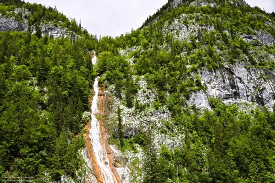 Schmaler Wasserfall umgeben von Bäumen