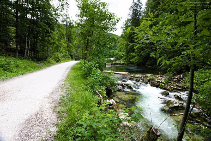 Schotterstraße neben dem Bachlauf des Toplitzbaches auf dem Weg zum Toplitzsee