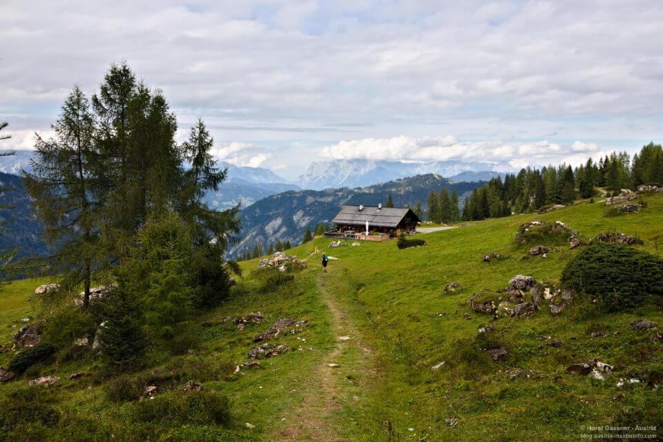 Heukaralm - Wanderung Saukarkopf in Großarl
