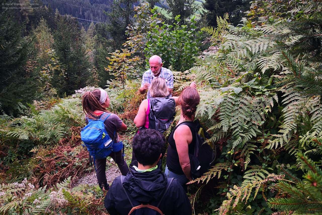 Unterwegs mit einem Nationalpark-Ranger - Salzburger Bergwanderführer