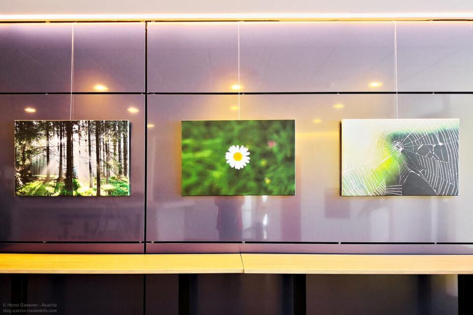 Ausstellung Bilder auf Leinwand im K.U.L.T. in Hof - Natur auf Leinwand