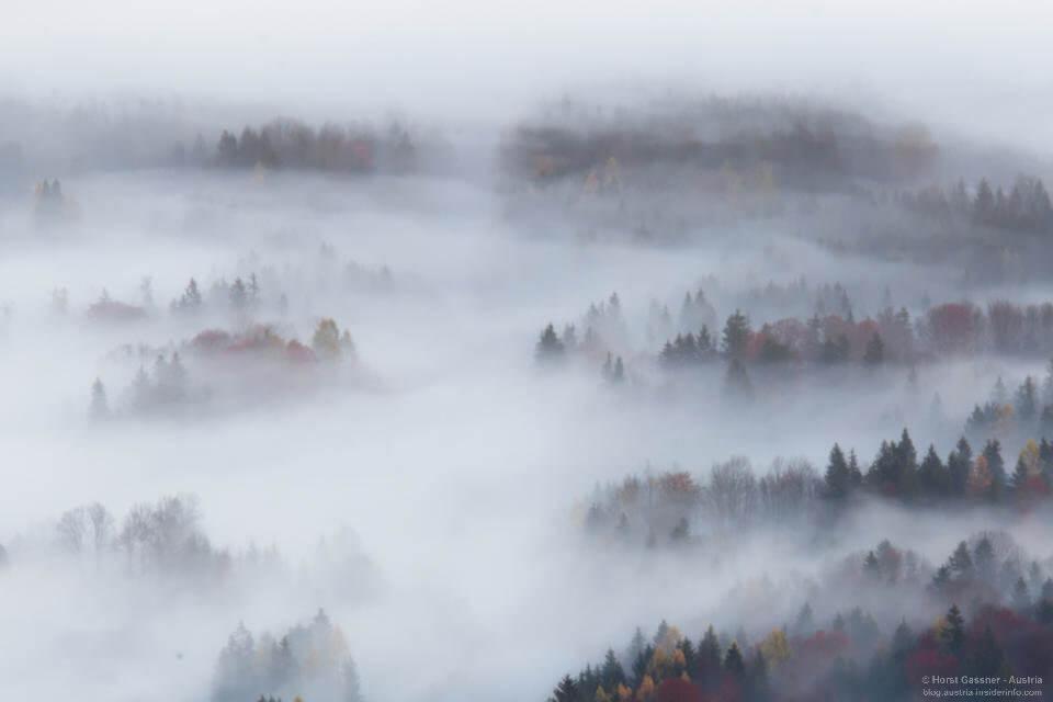 Trierenberg Super Circuit 2021: Nebel über Strobl