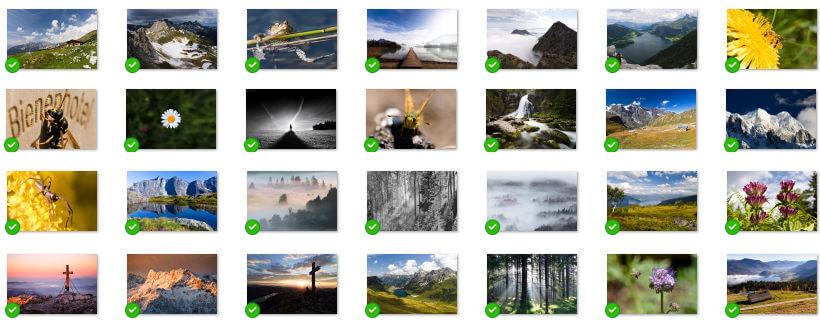 Trierenberg Fotowettbewerb - die Auswahl