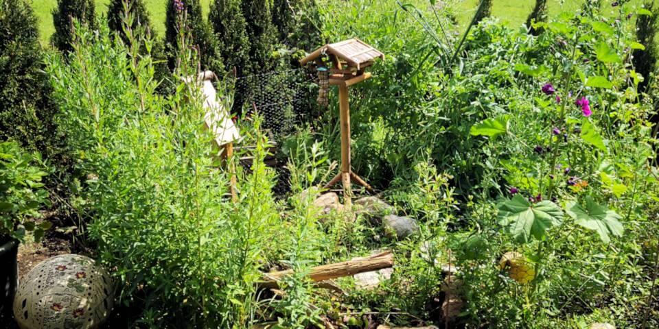 Wildblumenwiese - Nisthilfe für Wildbienen
